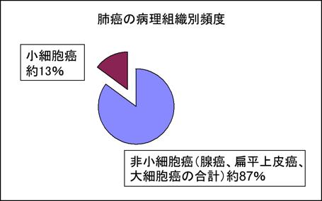 hosoku1