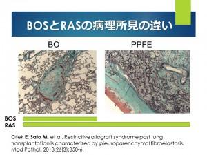 Histology BOS RAS